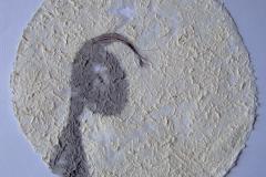 """刘丽芬 Liu Lifen《档案》 """"Archives"""", 2005-2006"""