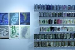 刘丽芬 Liu Lifen, 2014年12月《无用之门》参加《出门与回家》展览。这是我2002年至2008年间的工作日记,记录着我每天,每月必须去做的每件事,而完成后又都习惯性的勾画涂抹了。 图形日记 2008年