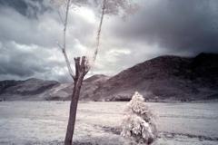 刘丽芬《伪饰》互动行为 丽江玉湖村雪上脚下 2009年6月19-20日
