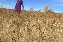 刘丽芬 Liu Lifen 《携带》行为图片,影像:刘丽芬,音乐:Kris Ariel,美国 Prescott 2009年11月