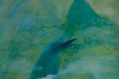 刘丽芬Liu Lifen  孤鸟 Lonely Bird 丝绸丙烯彩墨Acylic ink on silk 50x60cm 2013