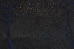 刘丽芬 星空游No.2 布面油画木炭综合材料Liu Lifen Wondering Night No.2 Oil and Mixed materials on Canvas 120X150cm 2015副本