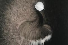 23, 刘丽芬 Liu Lifen 嗅 Sniff 布面油画 Oil on Canvas, 73x60cm, 2019